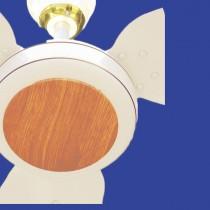 Dynamic Wood Fan